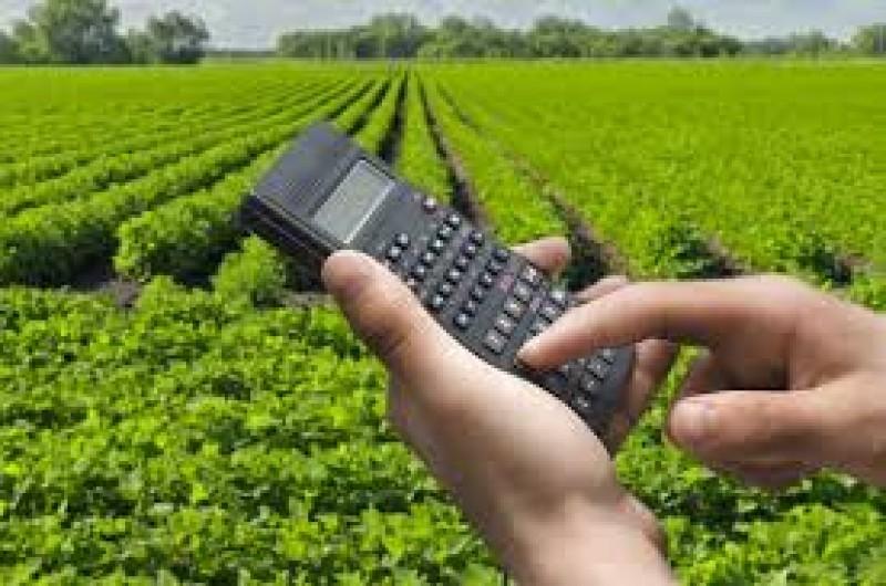 MP anula renegociações de dívidas rurais