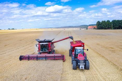 Produção agrícola deve crescer 20% na próxima década
