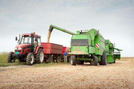 Valor da Produção Agropecuária fecha 2018 em R$ 569,8 bilhões