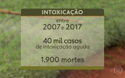 Brasil registra 40 mil casos de intoxicação por agrotóxicos em uma década