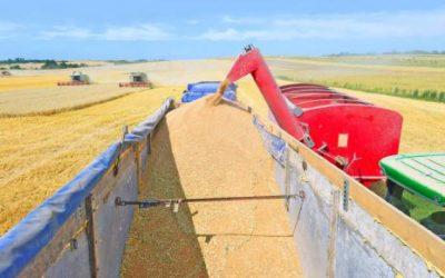 Faturamento da produção agropecuária deve encerrar 2019 em R$ 588,8 bilhões