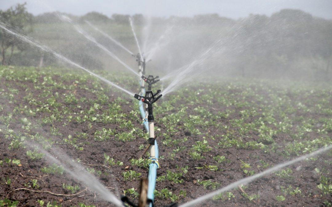Ministra diz que decreto vai recompor subsídio em energia para agronegócio