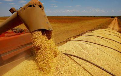 Brasil começa novo ano-safra com produtores preocupados com o dólar