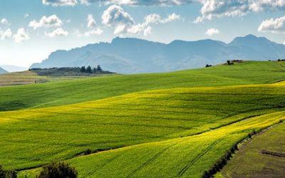 Brasil e Alemanha firmam acordo de cooperação técnica no setor agrícola